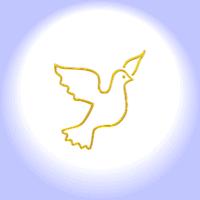 Ornithophobie - Angst vor Vögeln - Vogelphobie