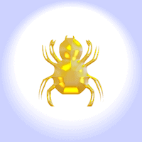 Angst vor Spinnen Spinnenphobie Spinnenangst Arachnaphobie
